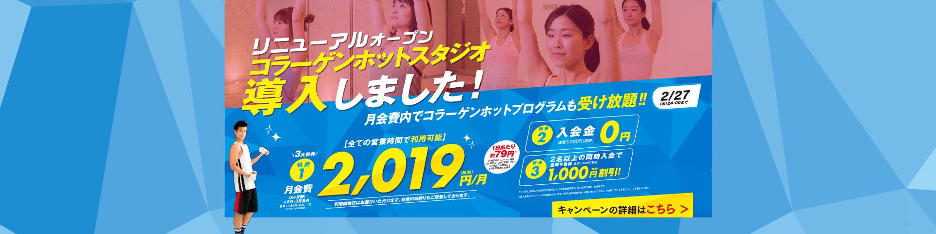 2019年2月キャンペーン